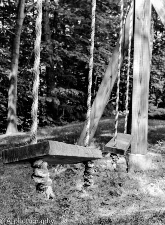 Stone Hill Inn: We felt so young on these rustic swings
