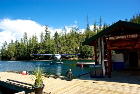 Direct charter air service to any of Nootka Marine Adventures three resorts