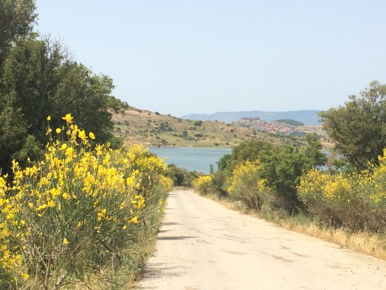 Molyvos, Griekenland: On the road to Anna's