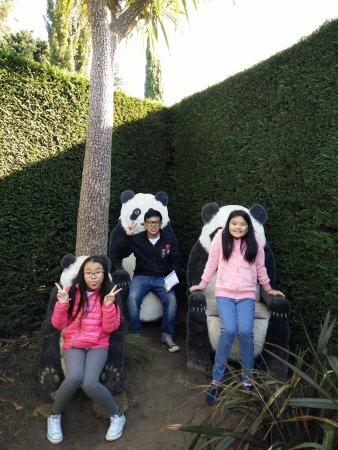Arthurs Seat, Australia: the panda royals