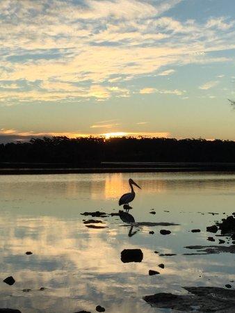 Sanctuary Point, Australia: photo3.jpg