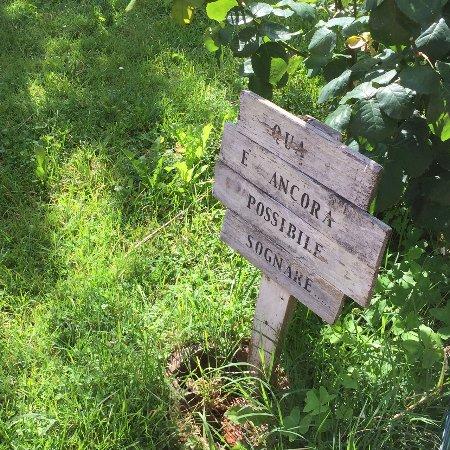 B&B Casa Nan: Giardinetto