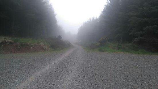 Kilmallock, Ireland: Early morning heading up on the Brown Trail