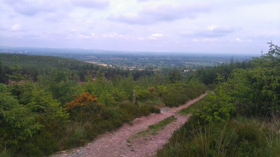 Kilmallock, Ireland: View from part of the White looped trails