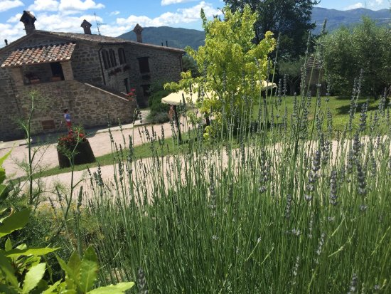 Agriturismo Ampugnano: photo0.jpg