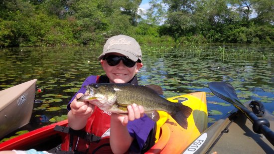 Norton, MA: Fishing Trips