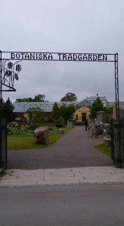 Uppsala, Zweden: FB_IMG_1466513000740_large.jpg