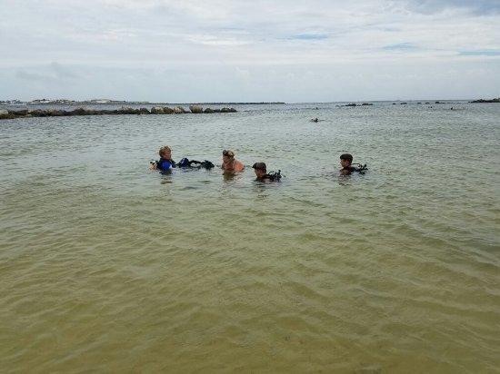 Diving PCB