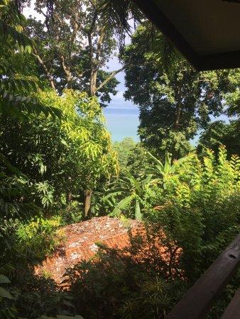 Pavones, Costa Rica: photo1.jpg