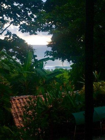 Pavones, Costa Rica: photo3.jpg
