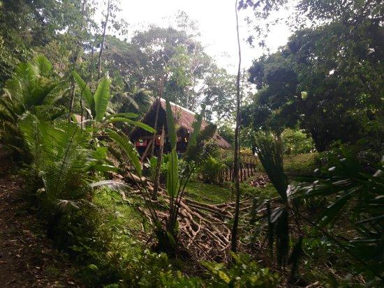 Pavones, Costa Rica: photo6.jpg