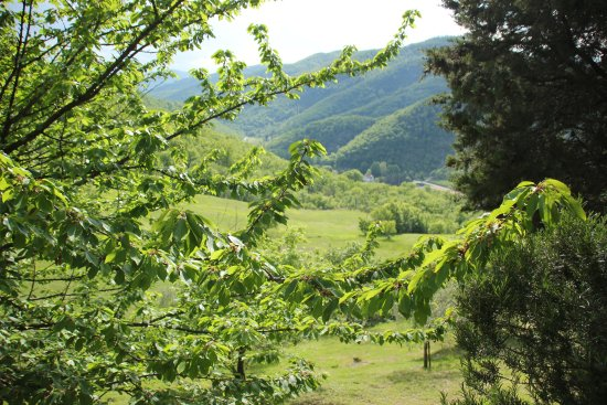 San Godenzo, Италия: View from the room.