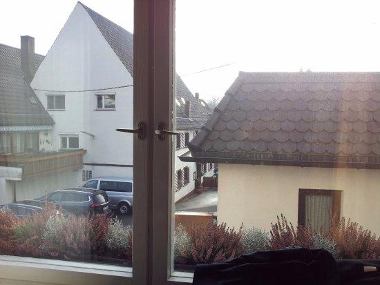 Hotel-Gasthof Rotes Roß: Visão do Quarto