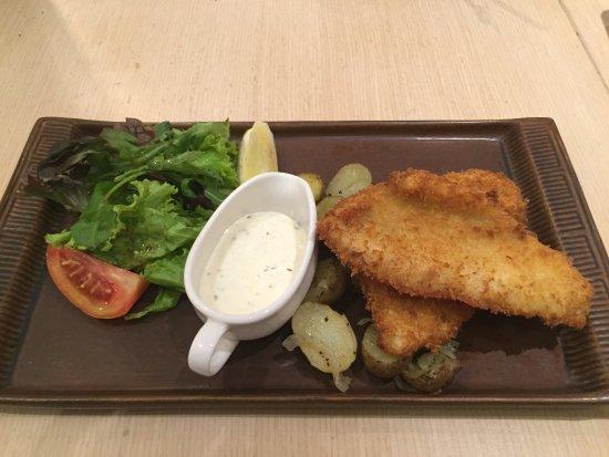 Bakerzin: Dory Fish