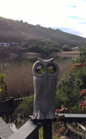 Wilderness, Sør-Afrika: Interesting garden decor