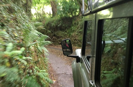 Cornish Heritage Safaris -  Tours : Lots of beautiful (but TINY) Cornish roads