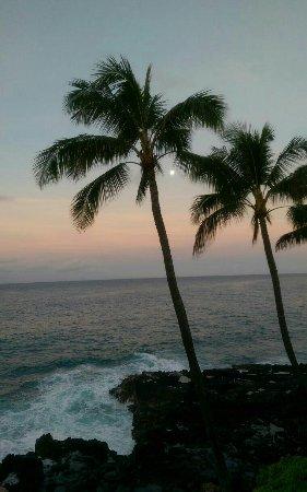 Poipu Shores Resort: edited_1466524732807_large.jpg