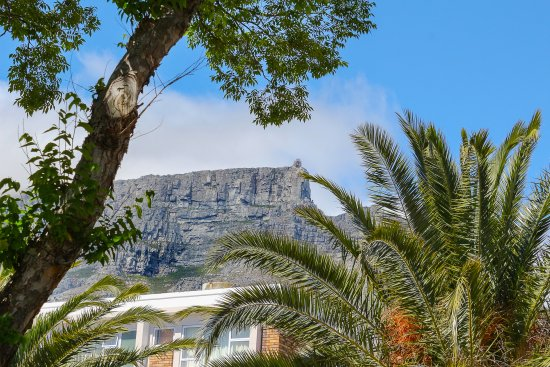 Derwent House Boutique Hotel: Table Mountain up the road . . .