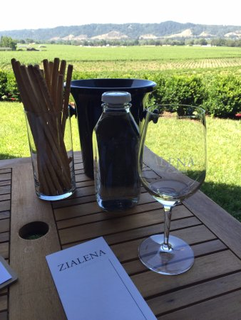 Wine Cube Tours: Great tasting on the patio overlooking the vinyard at Zialena
