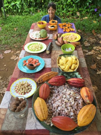 Kilauea, Hawái: Cacao pods and fresh exotic fruit on the tour