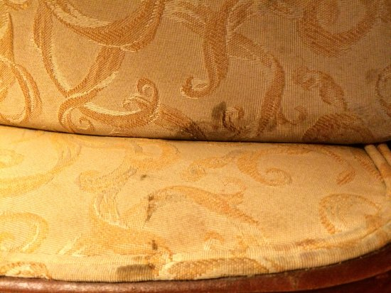 Days Inn & Suites Elyria: Stained chair