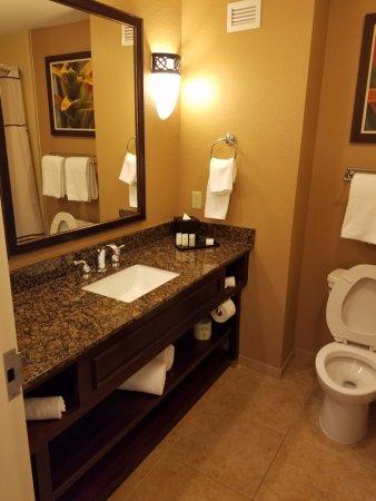 Embassy Suites by Hilton Orlando Lake Buena Vista South : Bathroom