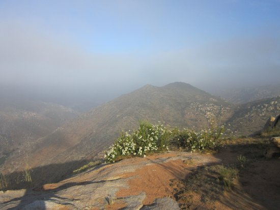 Rancho La Puerta Spa: During the Raven hike, at the top!!