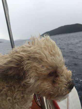 Sail the Day - Skiathos Sailing Trips : photo4.jpg