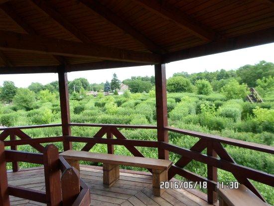 Csillagösvény Útvesztő Öko-élménypark: Kilátás a pihenőről