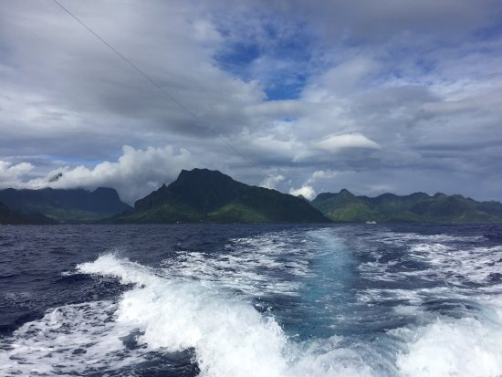 Moorea, Polinesia Francesa: Trolling on the way out from port