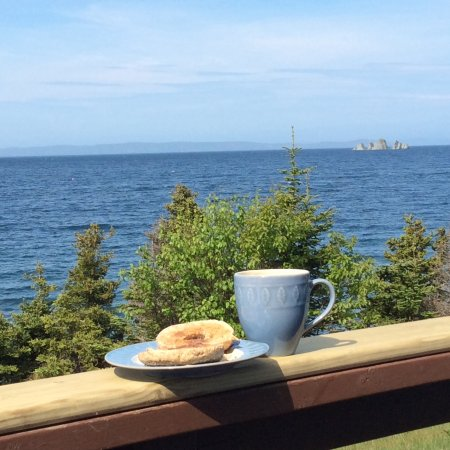 Whiteway, Kanada: Wonderful view while eating breakfast outside.