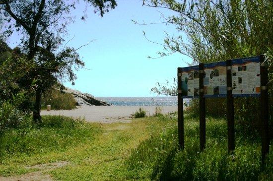 Accès à la plage de Bonporteau