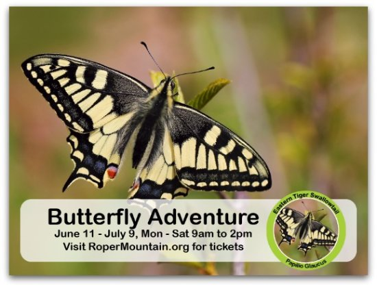 Roper Mountain Science Center : New living exhibit - summer 2016!