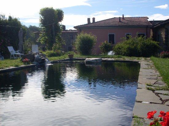 Giardino con piscina picture of agriturismo il montale mulazzo tripadvisor - Giardino con piscina ...