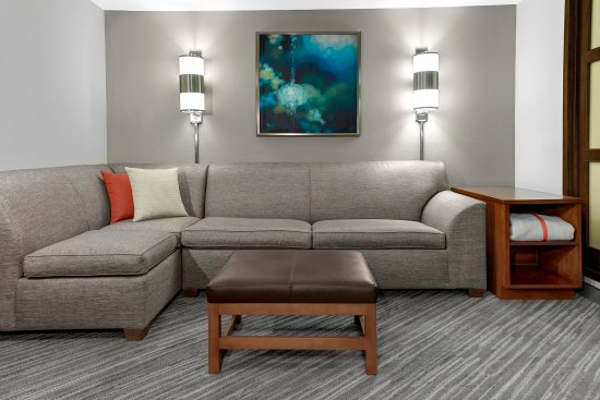 Hyatt Place Detroit/Livonia: sofa