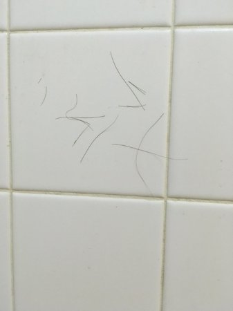 Days Inn by Wyndham Dothan : Hair (not mine!) on shower wall.