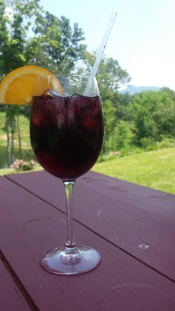 Pilot Mountain, NC: A really nice winery in NC