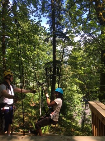 Bellevue Zip Tour - 2018 All You Need to Know Before You Go (with Photos) - TripAdvisor