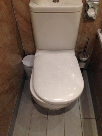 Kennford, UK: Loose toileyt seat