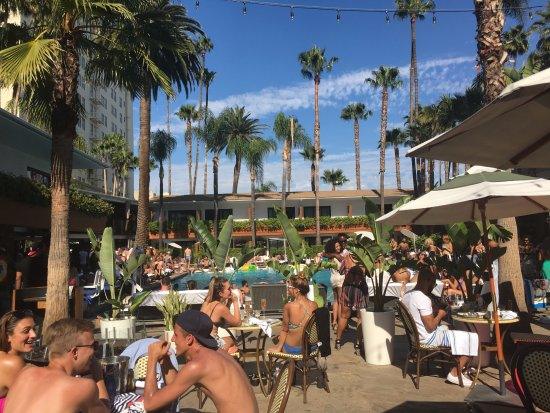 The Hollywood Roosevelt: It's a Pool Party!