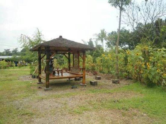 Kediri, إندونيسيا: Kampung Anggrek