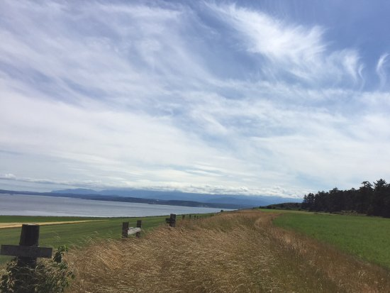 Coupeville, WA: The path over to the water.