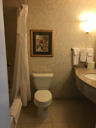 Hilton Garden Inn Tri-Cities/Kennewick: Standard bathroom