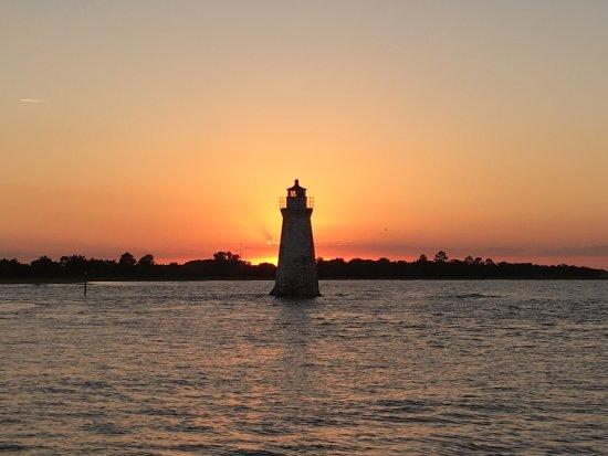 Tybee Island Sunset Dolphin Tours