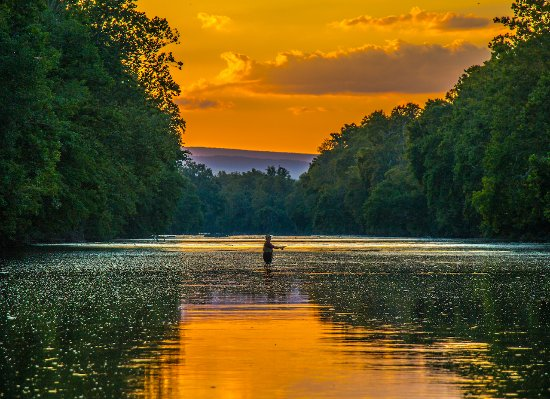 Front Royal, VA: Fly Fishing at North Fork Resort Association on Shenandoah's North Fork