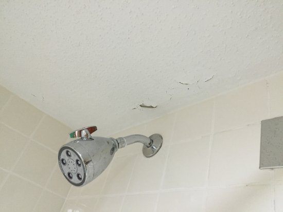 Wyndham Garden Grand Rapids Airport: Paint chipping off shower ceiling