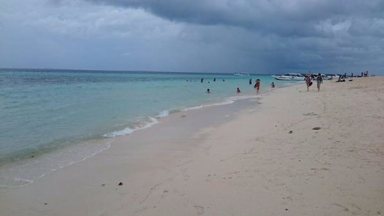 Phuket Tours Direct - Day Tours : Phi Phi Islands tour