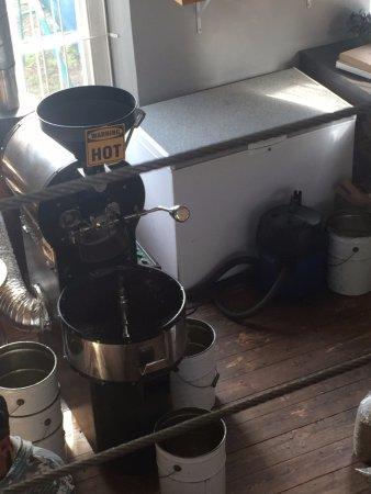fresh coffee ground