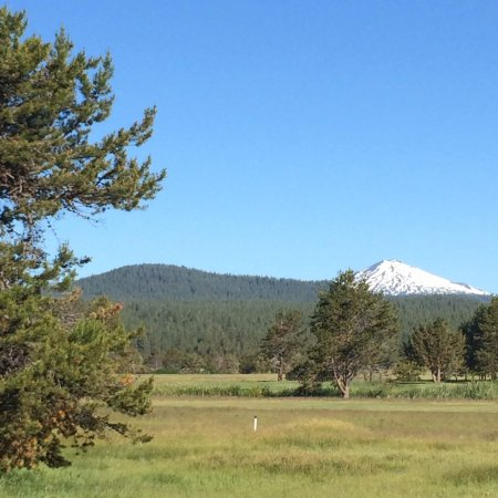 Sunriver Resort: To wake up to this every morning made up for the other quirks of the place.