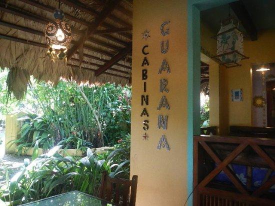 Hotel Guarana: garden